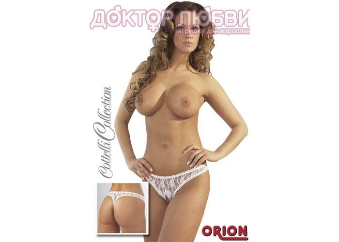 zhenskie-modeli-trusikov-eroticheskie